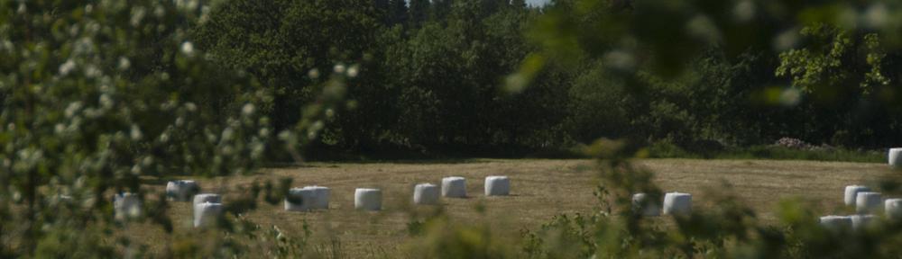 Östra Sventorp fiber ekonomisk förening